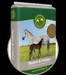 Stuten & Fohlen